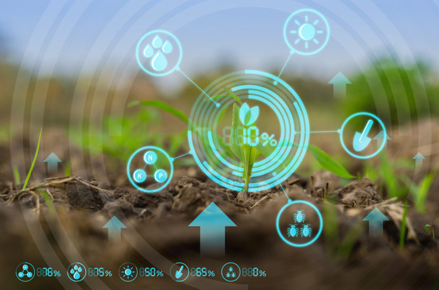 IoT and Smart Farming is the Technology Revolution for Australian Agriculture