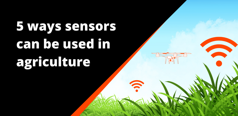 Sensors: five ways they can be used in agriculture